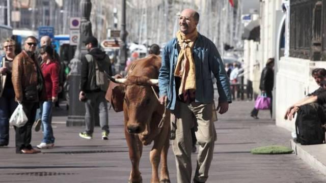 20160629-vaca-estrela-papo-de-cinema-09